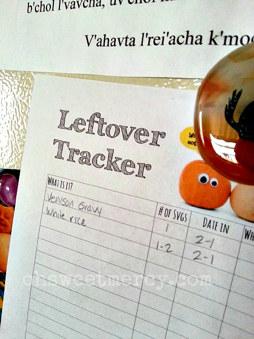 Waste Not Want Not Plus FREE Leftover Tracker Download | Oh Sweet Mercy #frugal#thm #free #organization #ohsweetmercy