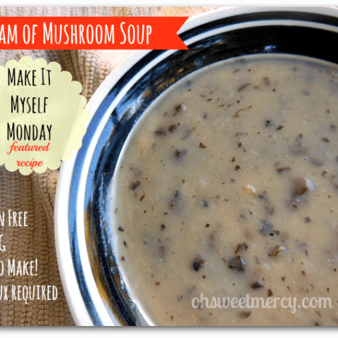 Cream of Mushroom Soup - (NOT THM)