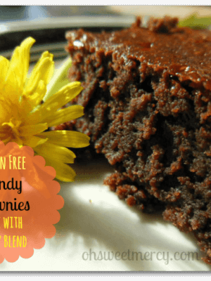 Gluten Free Dandy Brownies – Dandy Blend