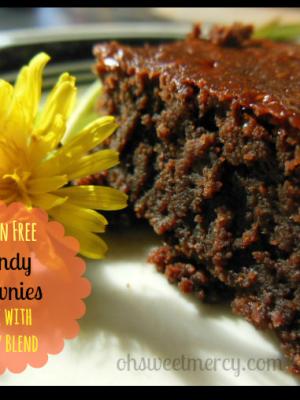 Gluten Free Dandy Brownies – Dandy Blend