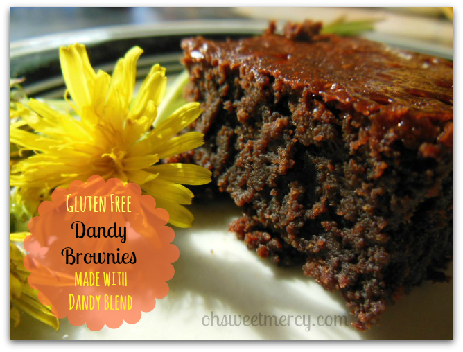 Gluten Free Dandy Brownies