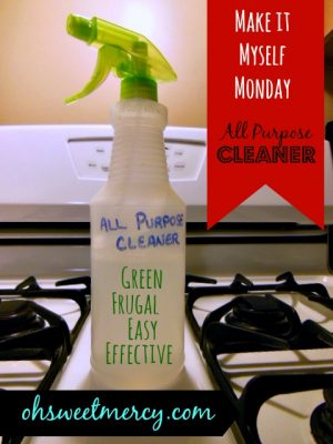 Homemade All Purpose Cleaner {Make it Myself Monday}
