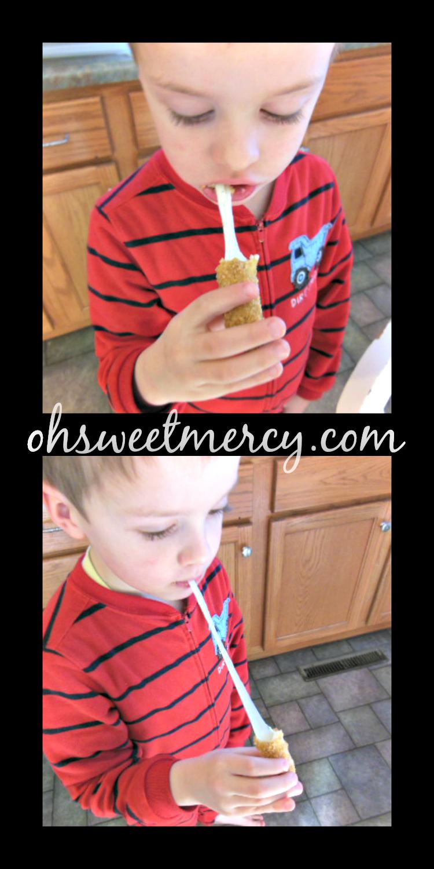 Homemade Mozzarella Sticks Pass The Test