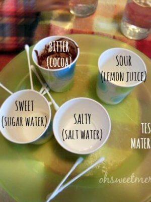 Fun Homeschool Experiments: Exploring Taste