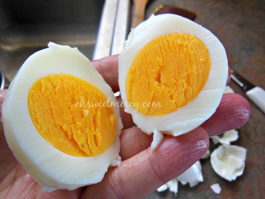 inside egg