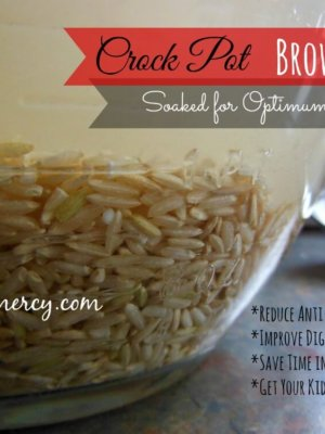 Crock Pot Soaked Brown Rice
