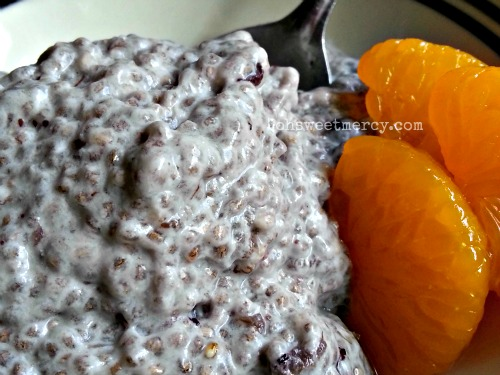 Chia Seed Pudding | Oh Sweet Mercy #healthy #chiaseed #recipes #thm #ohsweetmercy