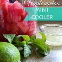 Refreshing 3 Ingredient Watermelon Mint Cooler | THM E