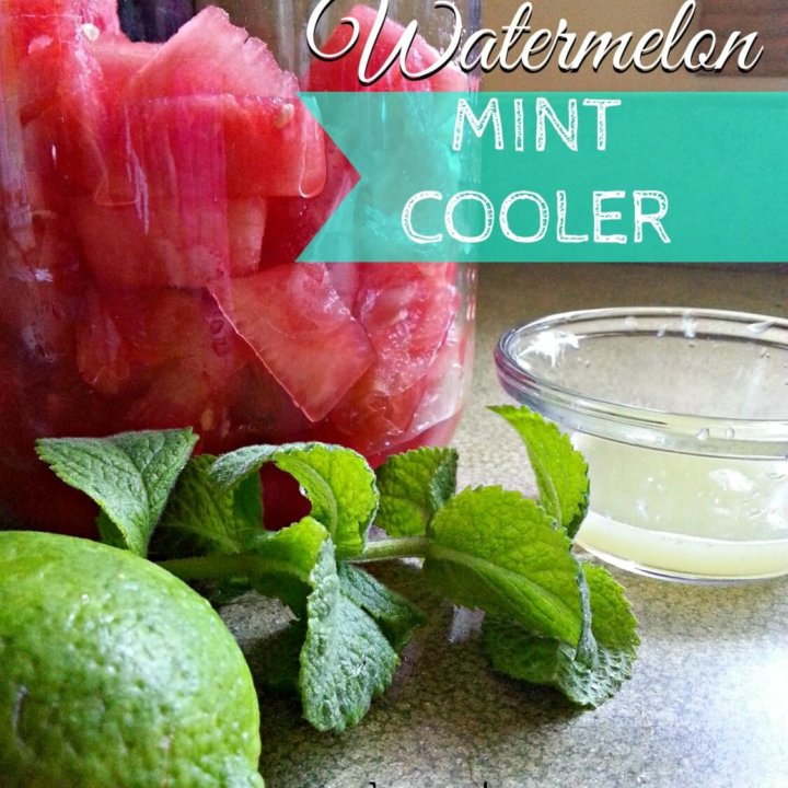 This 3 Ingredient Watermelon Mint Cooler is refreshing and contains no added sugar or sweeteners.