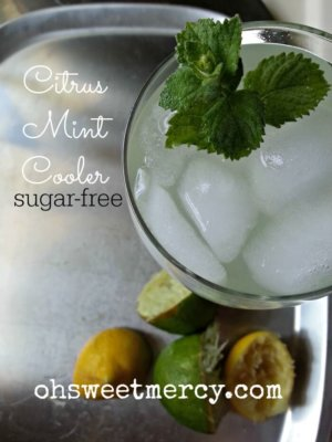 This Citrus Mint Cooler is a refreshing, sugar free way to stay hydrated on hot days.