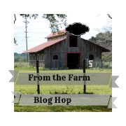 How to Add Milk to Soap – From the Farm Favorite 9/12/14
