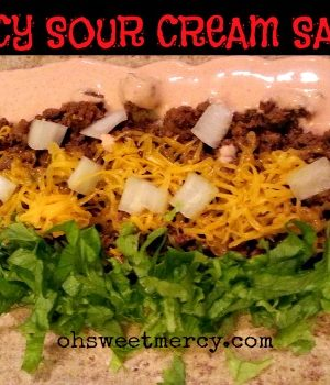 Spicy Sour Cream Sauce