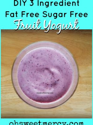 DIY 3 Ingredient Fat Free, Sugar Free Fruit Yogurt