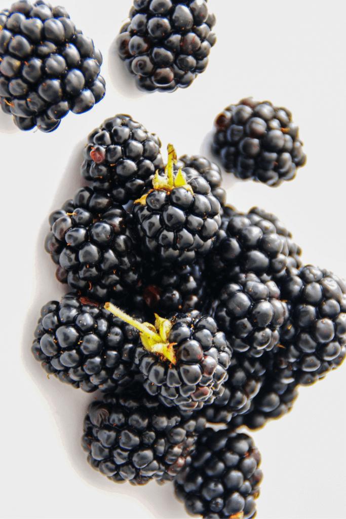 blackberries on white background