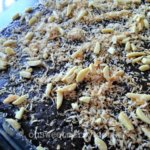 Flourless Chocolate Cake with Coconut Almond Topping - Grain Free, Sugar Free and THM Friendly
