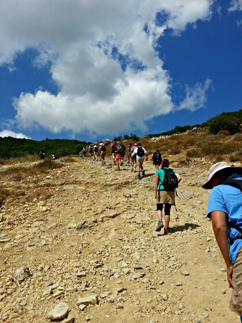 Up Mt Carmel |Oh Sweet Mercy #tastethehoney2015 #experiencetheholyland #ohsweetmercy