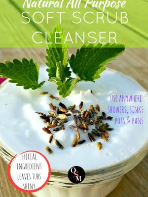 How to Make an All Purpose Soft Scrub Cleanser