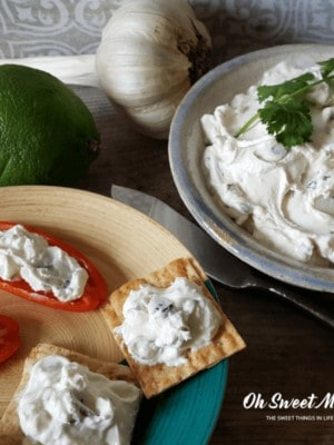 This Easy Homemade Yogurt Cheese with Garlic, Cilantro, and Lime is a low carb cracker's best friend. Also great on wraps and sandwiches as well as with veggies.