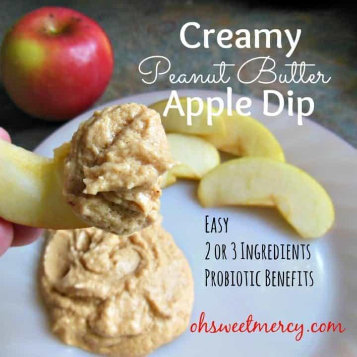 Creamy Peanut Butter Apple Dip (NOT THM)