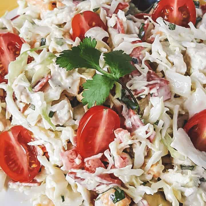 Crazy Chicken Cabbage Salad | THM S, Low Carb, Keto