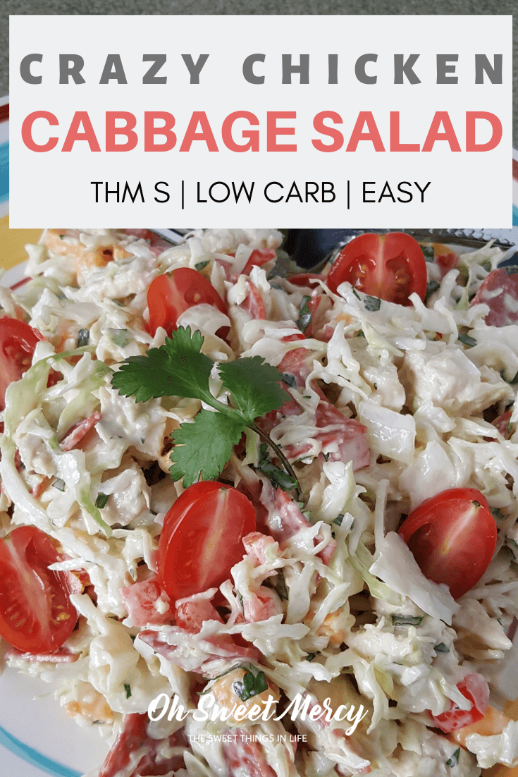 My Crazy Chicken Cabbage Salad is a quick and easy lunch or snack, perfect for low carb THM S meals! Get creative, get crazy, and make it your own! #thm #salads #lowcarb #easy #recipes