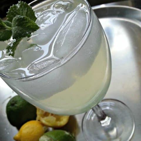 Sugar Free Citrus Mint Cooler | THM FP
