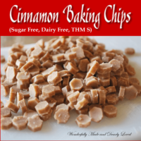 Sugar Free Cinnamon Baking Chips (Dairy Free, THM~S)
