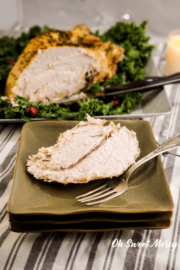 Slice of turkey breast on plate