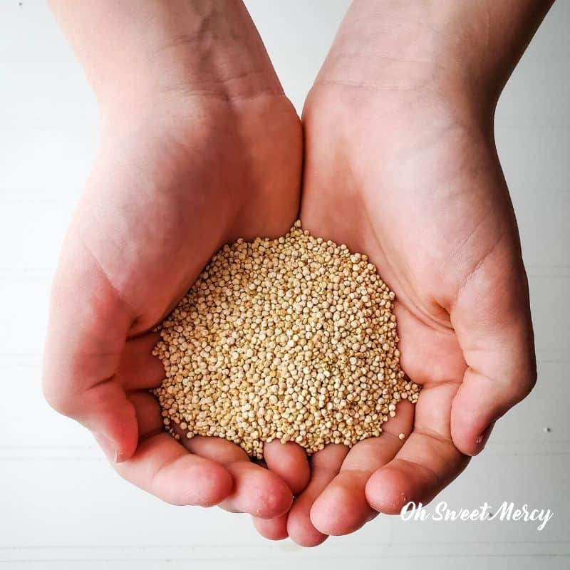 Hands full of uncooked quinoa