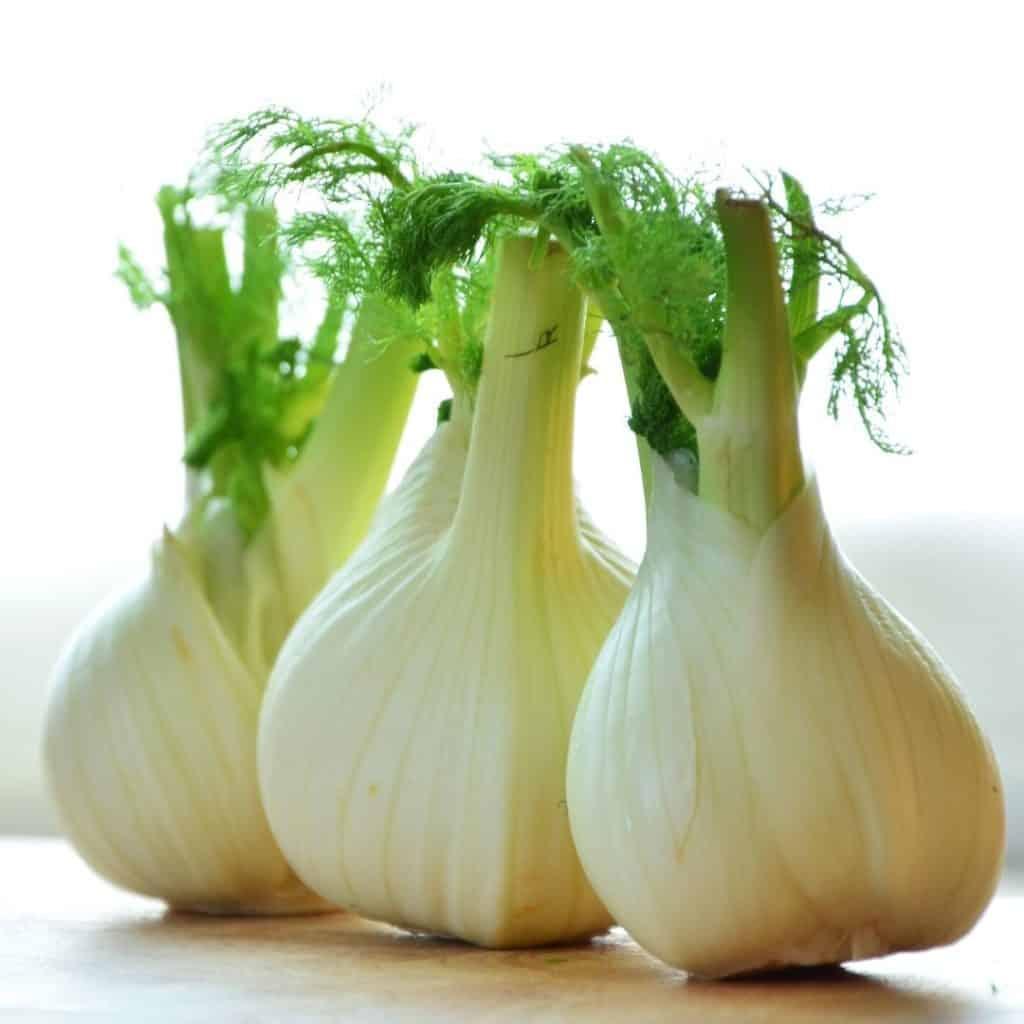 3 fennel bulbs