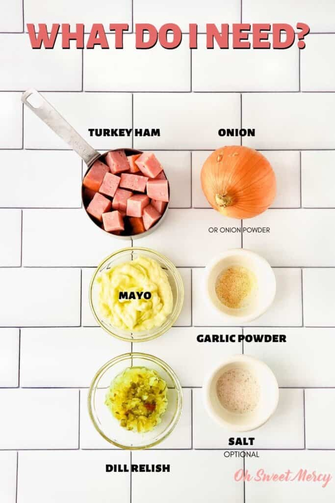 Deli Style Ham Salad ingredients: turkey ham, onion, mayo, garlic powder, dill relish, optional salt