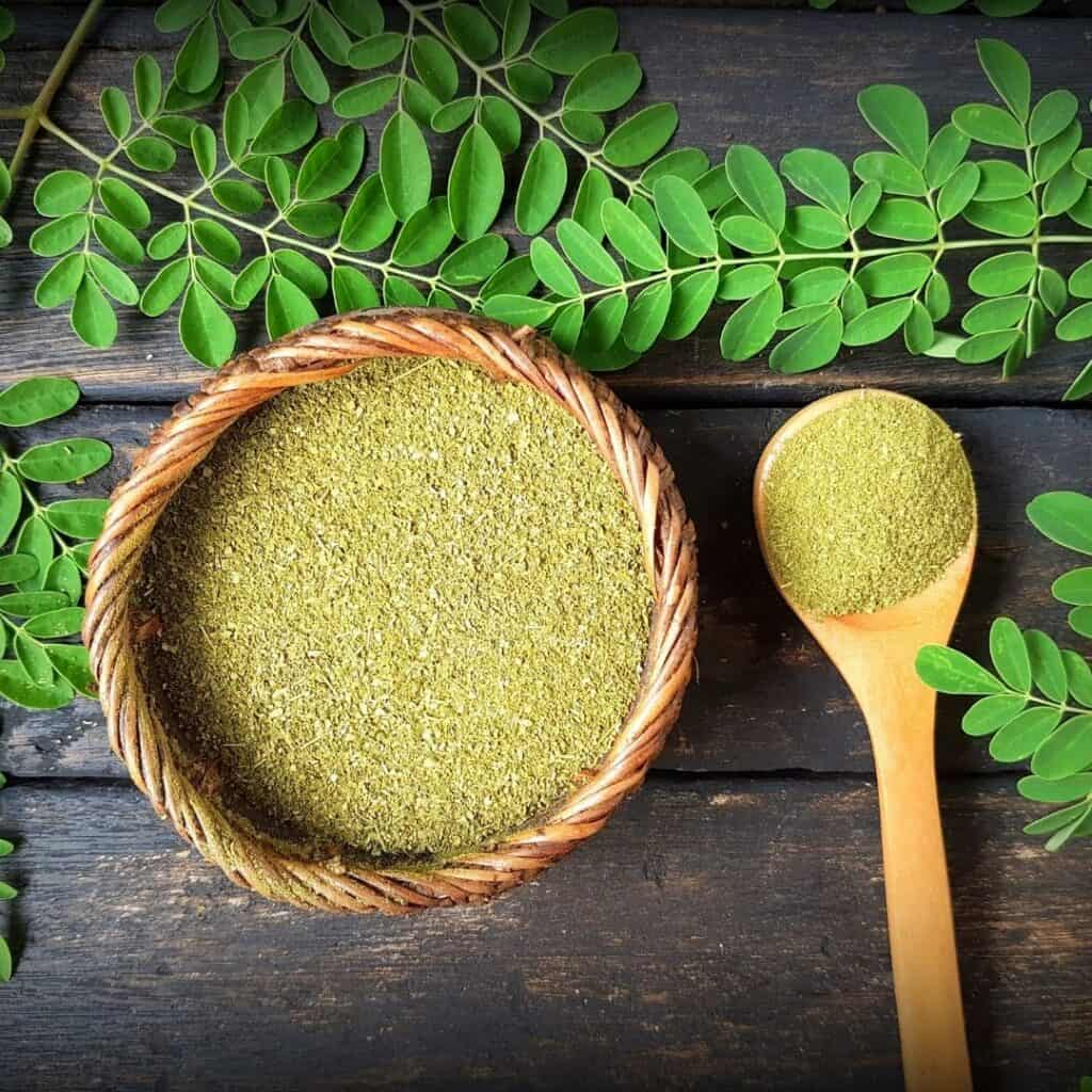 bowl of moringa with moringa leaves around it