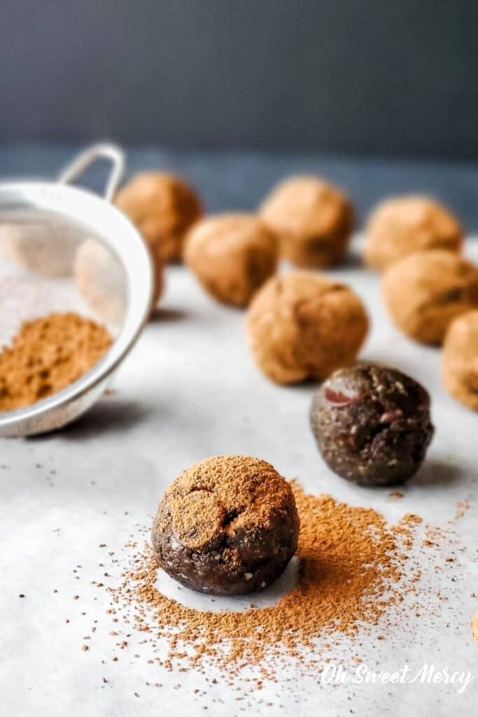 chocolate protein ball with cocoa powder sprinkled over it
